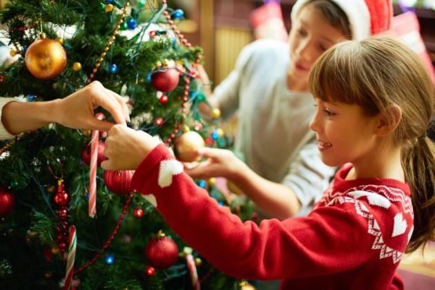 Как правильно выбрать новогоднюю елку: несколько советов