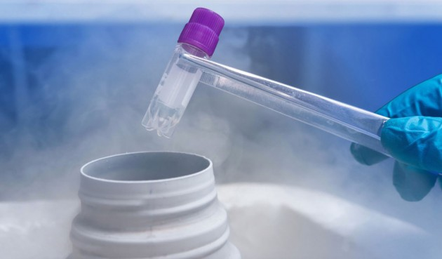 Витрификация ооцитов – способ отложить беременность