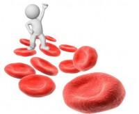 Низкий гемоглобин при беременности: как выявить и поднять?