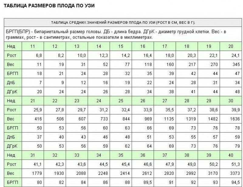 Таблица размеров плода узи