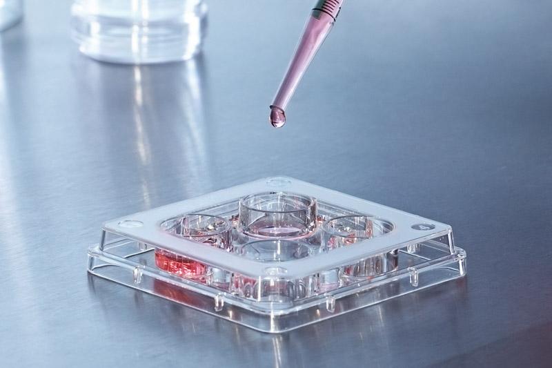 Характеристики сред для культивирования эмбрионов