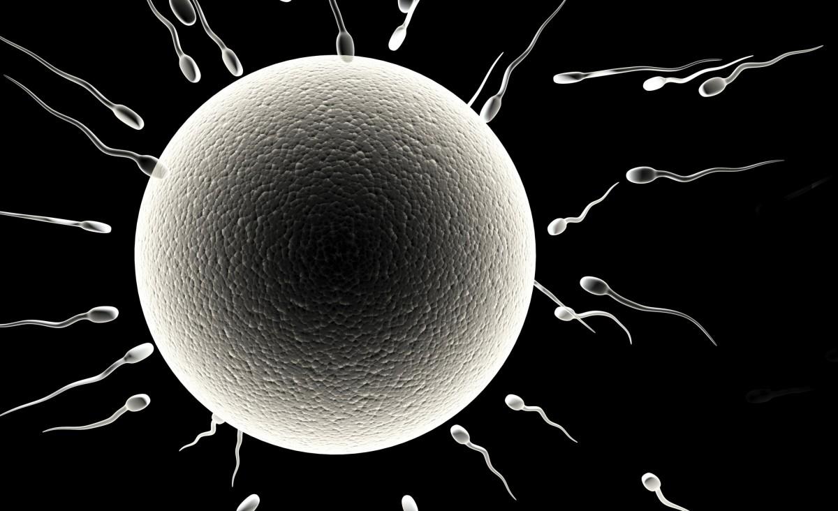 Как определить беременность на 1 неделе после зачатия