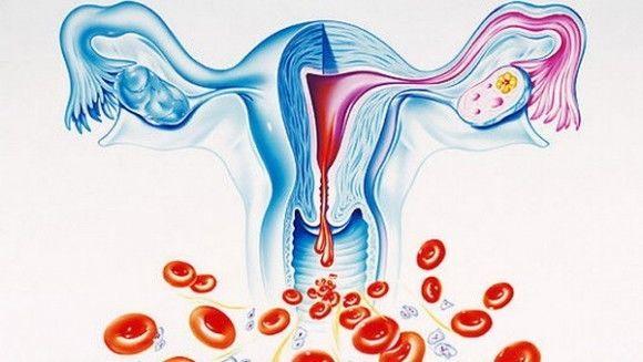 кровянистые выделения из влагалища при-шй1