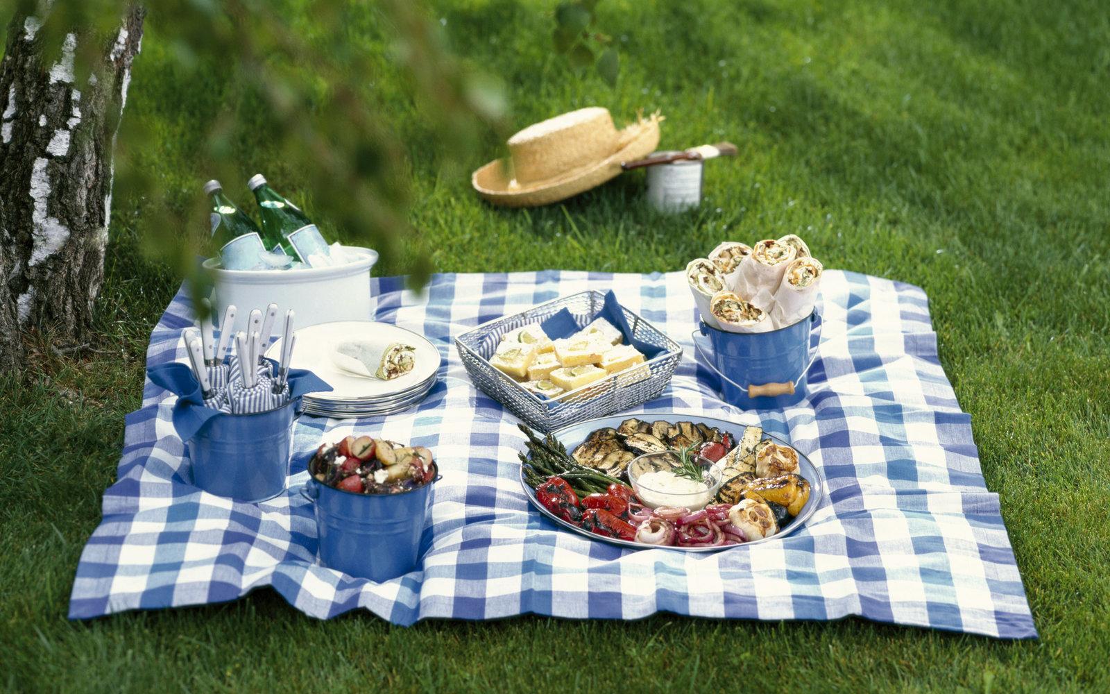 случившемся пионерлагеря еда для пикника на природе фото тобет редкая